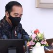 Sektor Pertanian Tumbuh 16.24 Persen Di Tengah Pandemi Covid 19