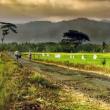 Pendataan Potensi Desa Untuk Membangun Negeri
