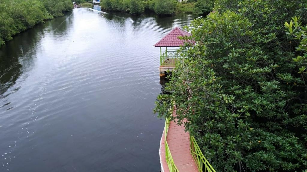 Taman Mangrove Pulo Tabek, Daya Tarik Wisata Baru di Tanah Singkil