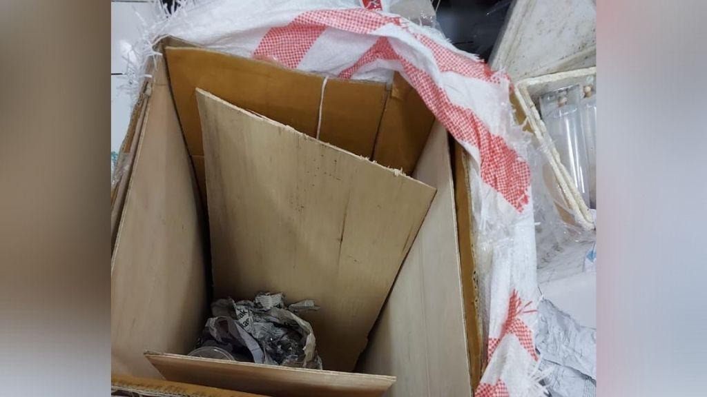 Sinergitas antara Badan Karantina Ikan, Pengendalian Mutu dan Keamanan Hasil Perikanan (BKIPM) bersama Bea Cukai dan Otoritas Bandara Juanda Surabaya berhasil menggagalkan penyelundupan benih bening lobster (BBL)