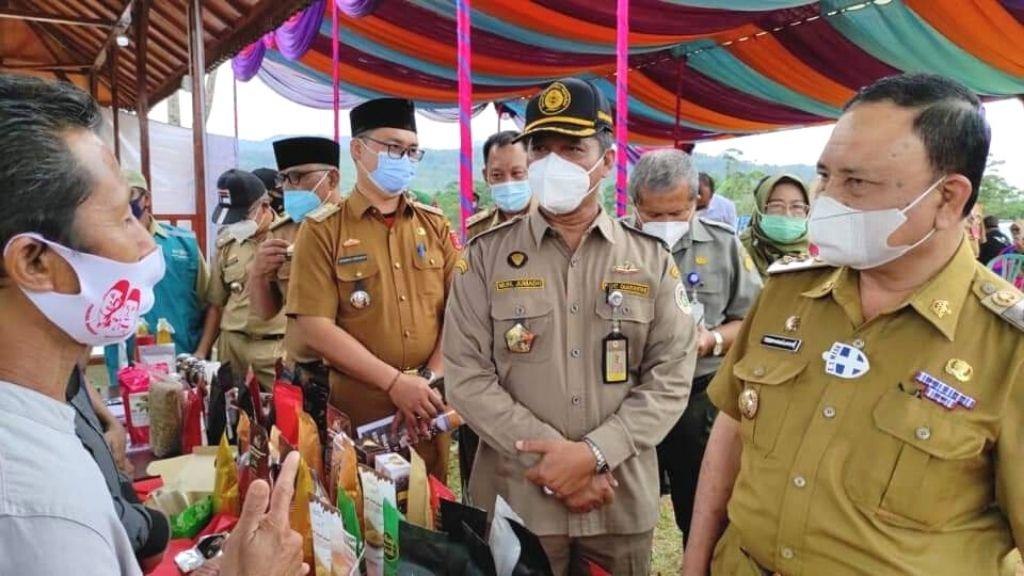 Ekspor Komoditas Pertanian Lampung di Pasar Global Meningkat